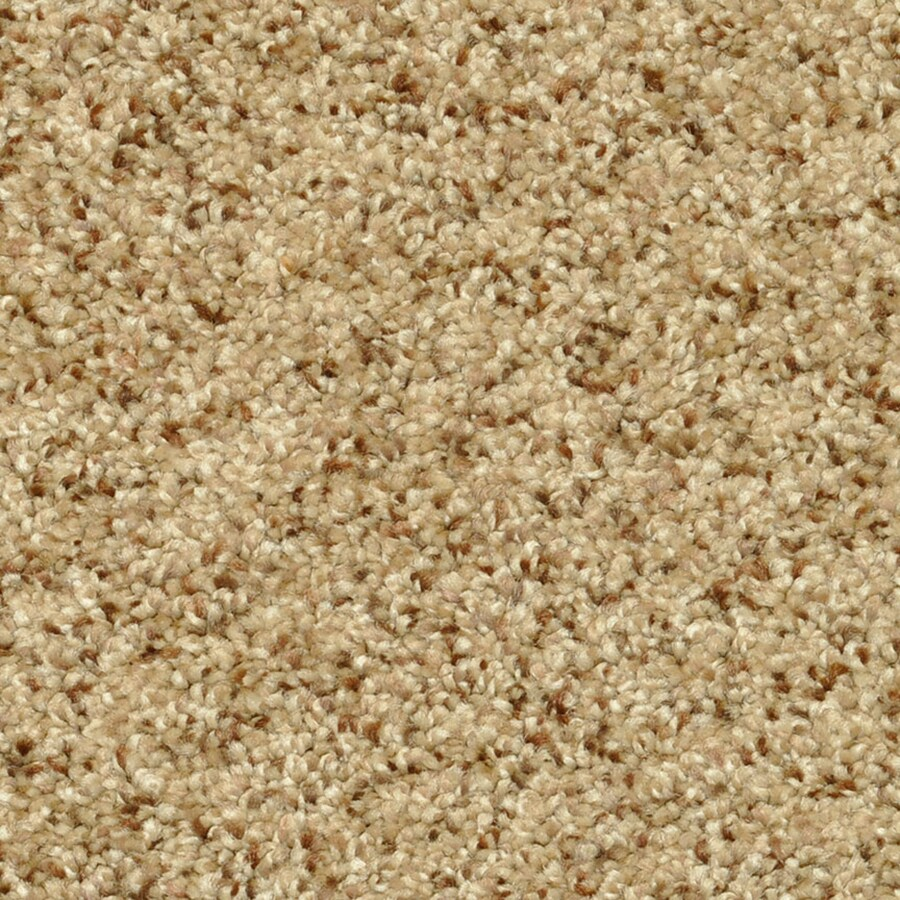 STAINMASTER PetProtect Day Trip Therapeutic Carpet Sample