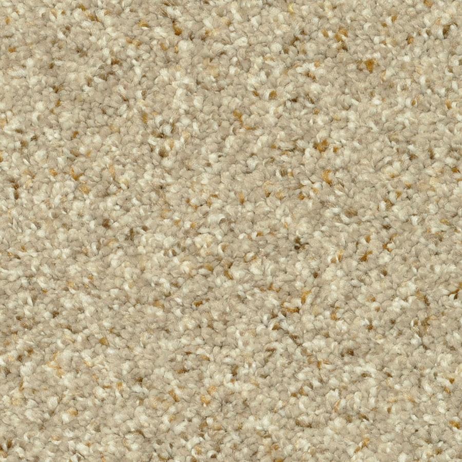 STAINMASTER PetProtect Day Trip Spa Carpet Sample