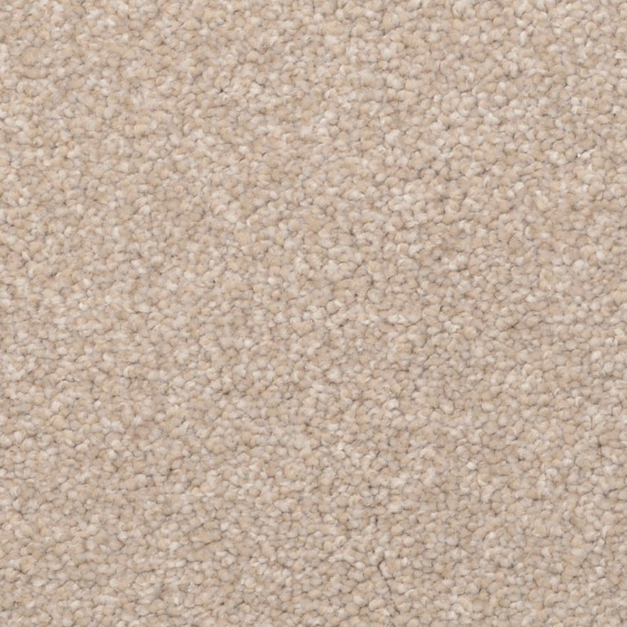 STAINMASTER PetProtect Excursion Bellview Carpet Sample
