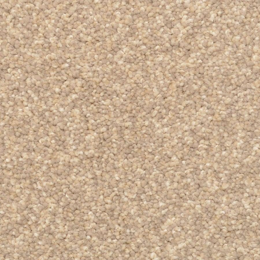 STAINMASTER PetProtect Excursion Ocala Carpet Sample