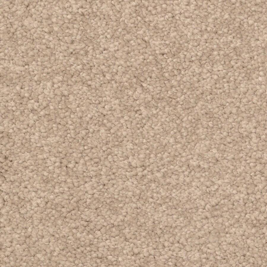 STAINMASTER PetProtect Excursion Palm Bay Carpet Sample