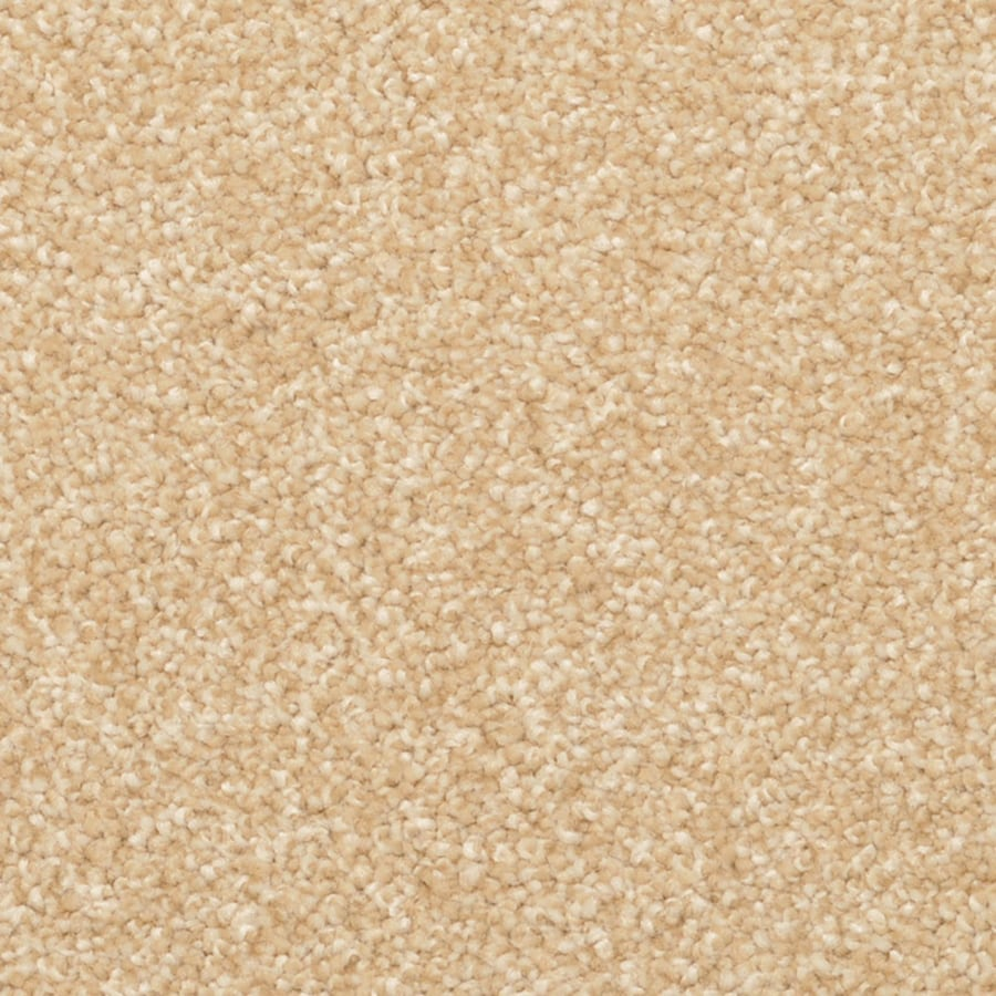 STAINMASTER PetProtect Excursion Palmetto Carpet Sample