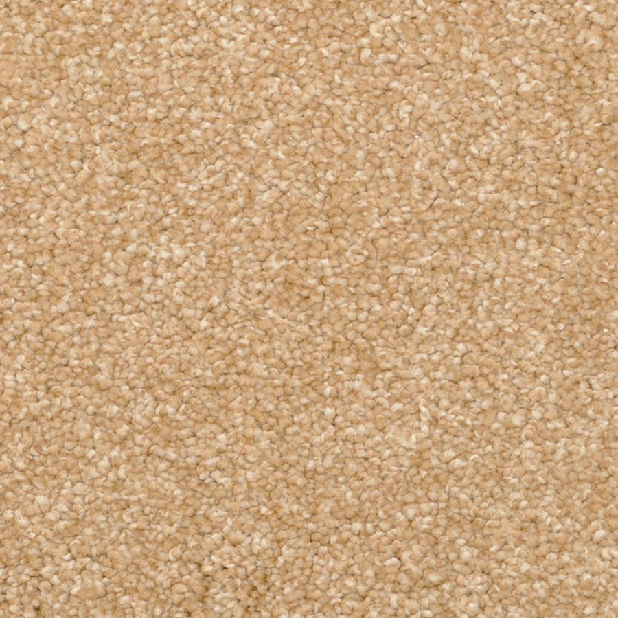 STAINMASTER PetProtect Excursion Quincy Shag/Frieze Carpet Sample