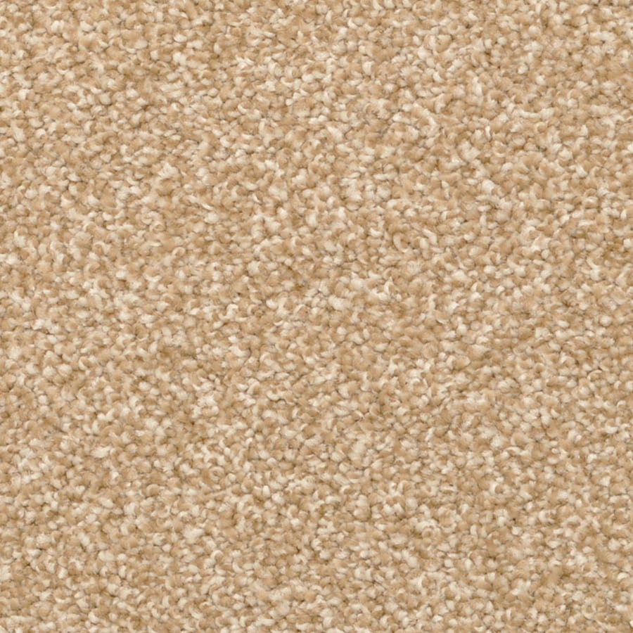 STAINMASTER PetProtect Excursion Freeport Carpet Sample