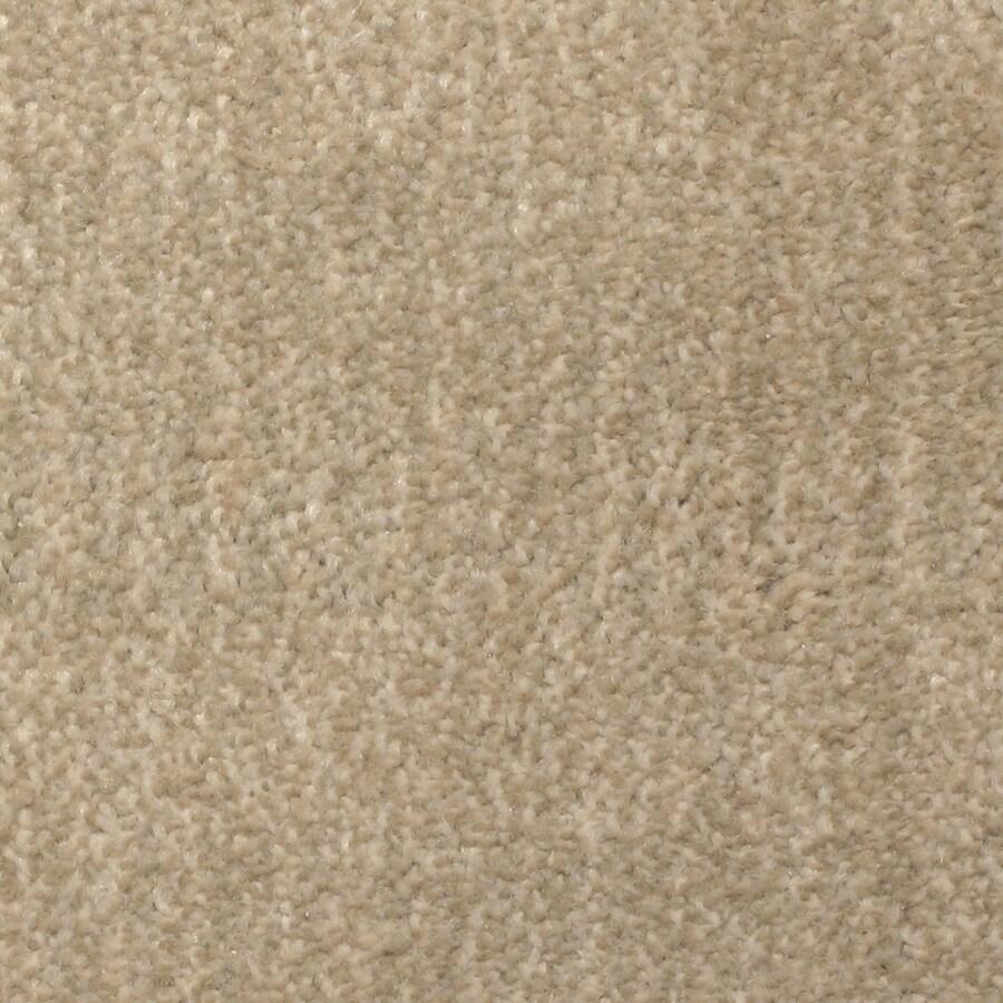 STAINMASTER PetProtect Pilot Point Bay View Carpet Sample