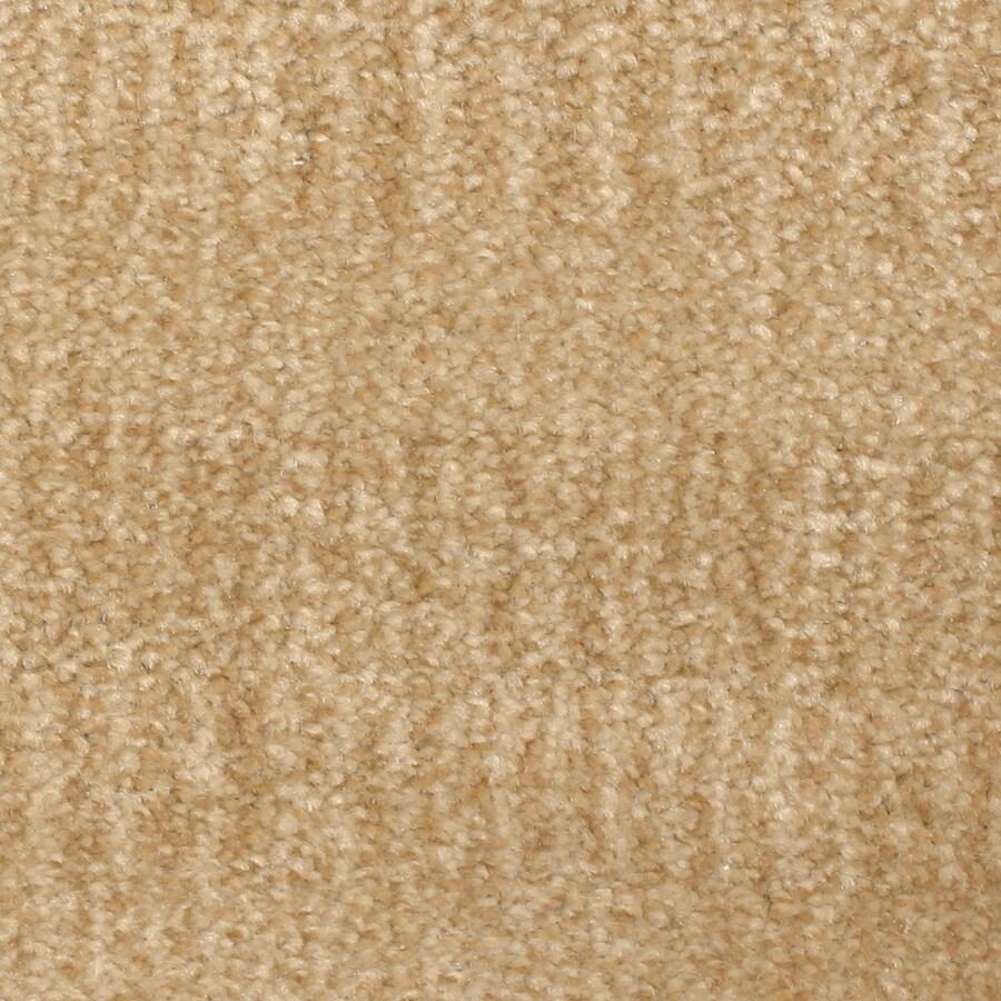 STAINMASTER PetProtect Pilot Point Boardwalk Carpet Sample