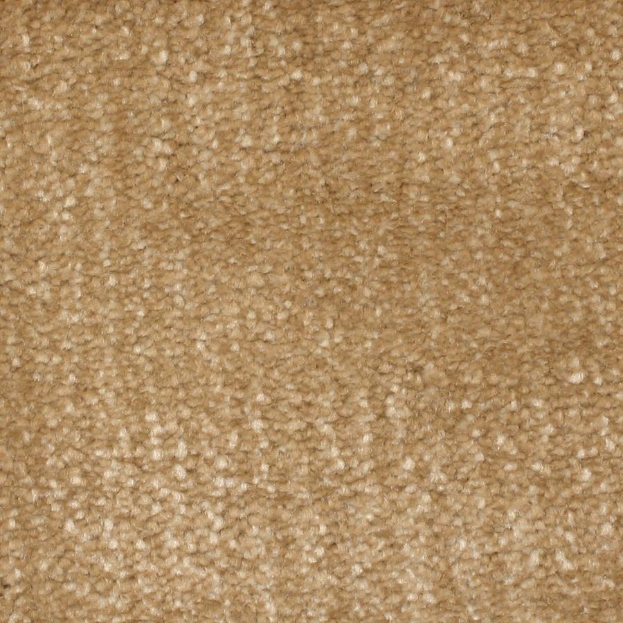 STAINMASTER PetProtect Pilot Point Cove Carpet Sample