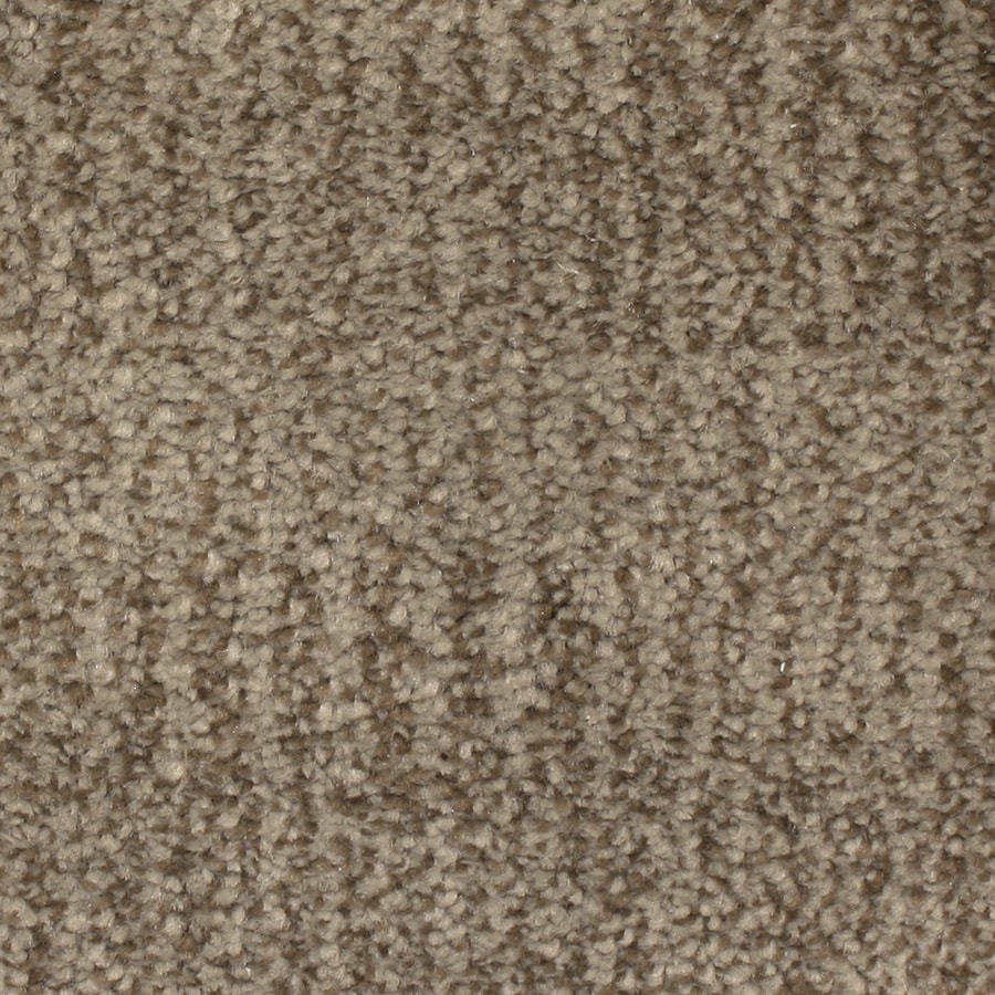 STAINMASTER PetProtect Pilot Point Driftwood Carpet Sample