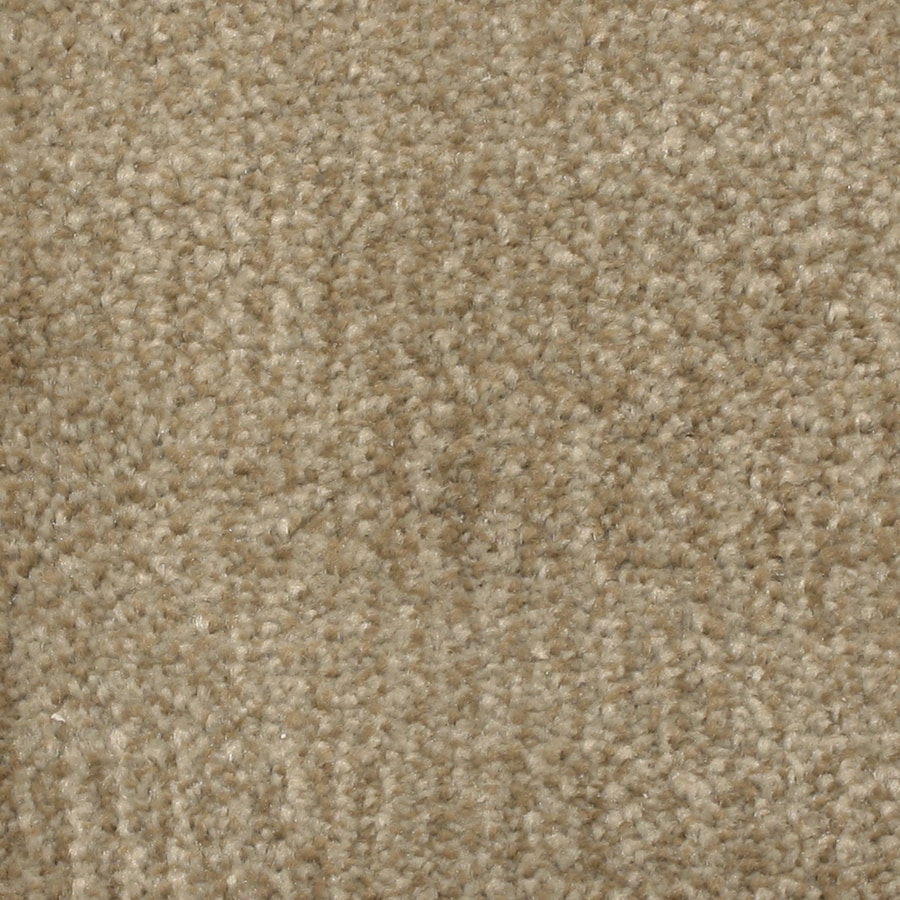 STAINMASTER PetProtect Pilot Point Inlet Carpet Sample