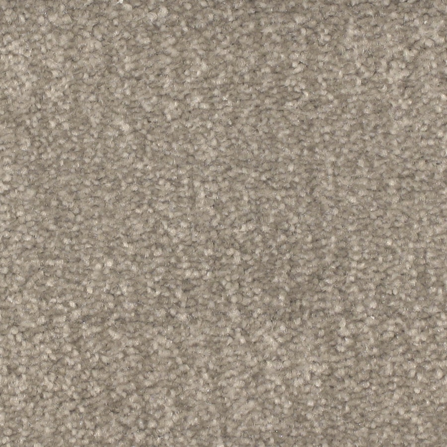 STAINMASTER PetProtect Pilot Point Lighthouse Carpet Sample