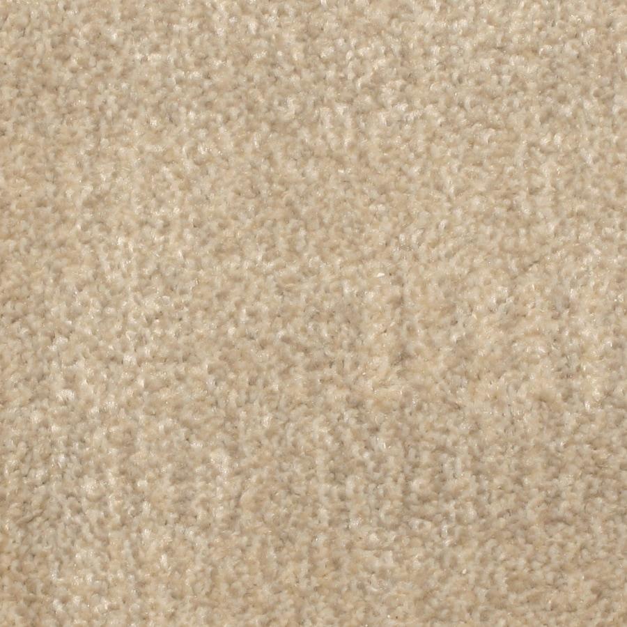 STAINMASTER PetProtect Pilot Point Moonlight Bay Carpet Sample