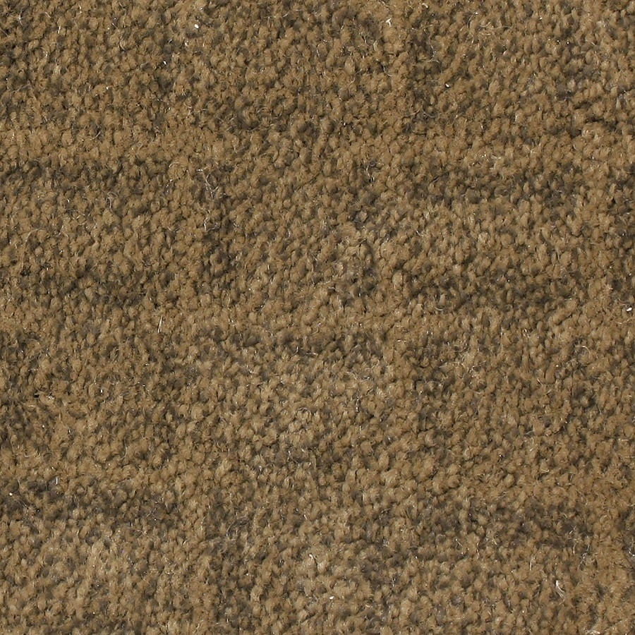 STAINMASTER PetProtect Topsail Aurora Carpet Sample