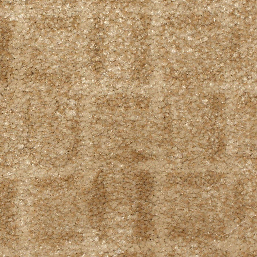 Shop STAINMASTER PetProtect Topsail Boardwalk Berber/Loop Carpet Sample at Lowes.com