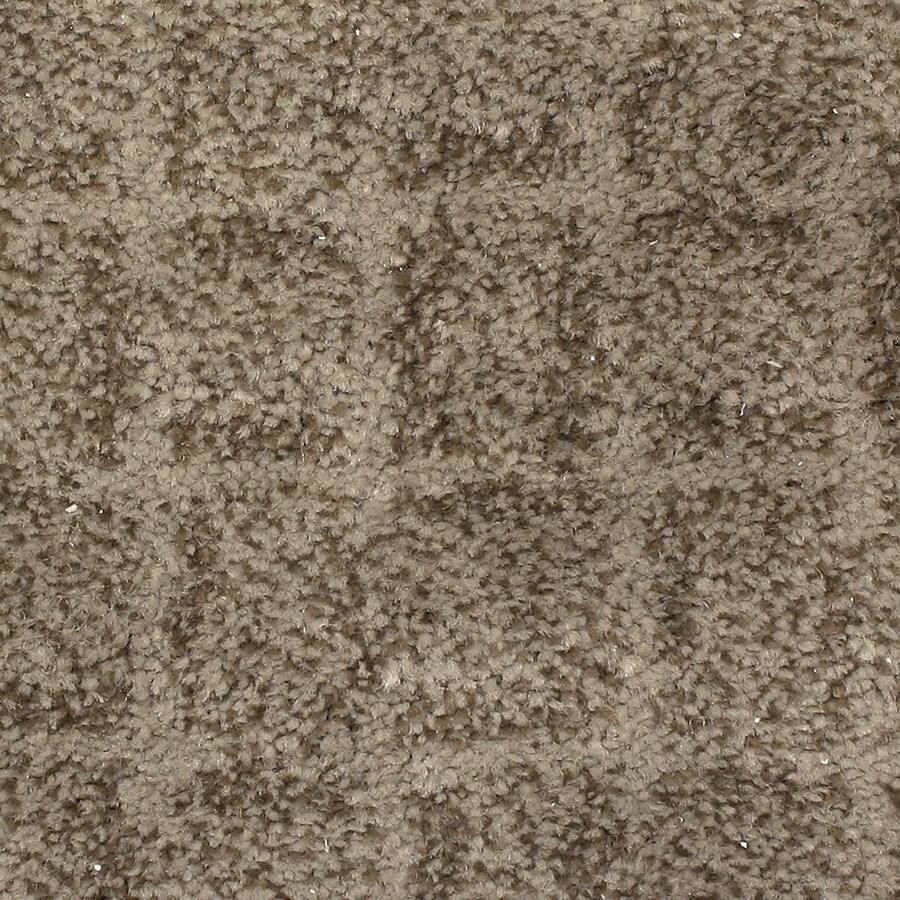 STAINMASTER PetProtect Topsail Driftwood Carpet Sample