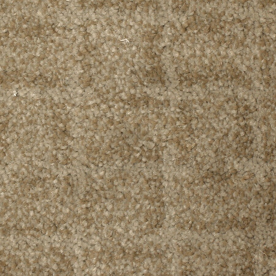 STAINMASTER PetProtect Topsail Inlet Carpet Sample
