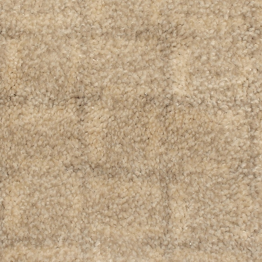 STAINMASTER PetProtect Topsail Moonlight Bay Carpet Sample