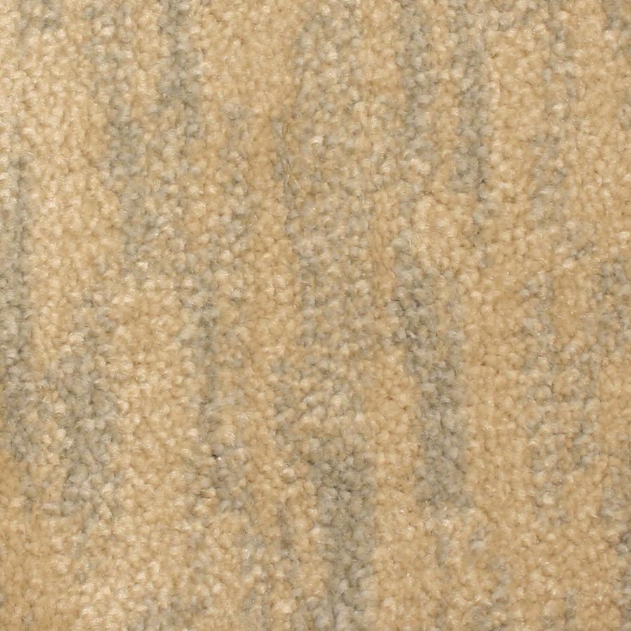 STAINMASTER PetProtect Grays Harbor Anchor Carpet Sample