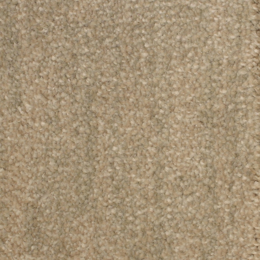 STAINMASTER PetProtect Grays Harbor Bay View Carpet Sample