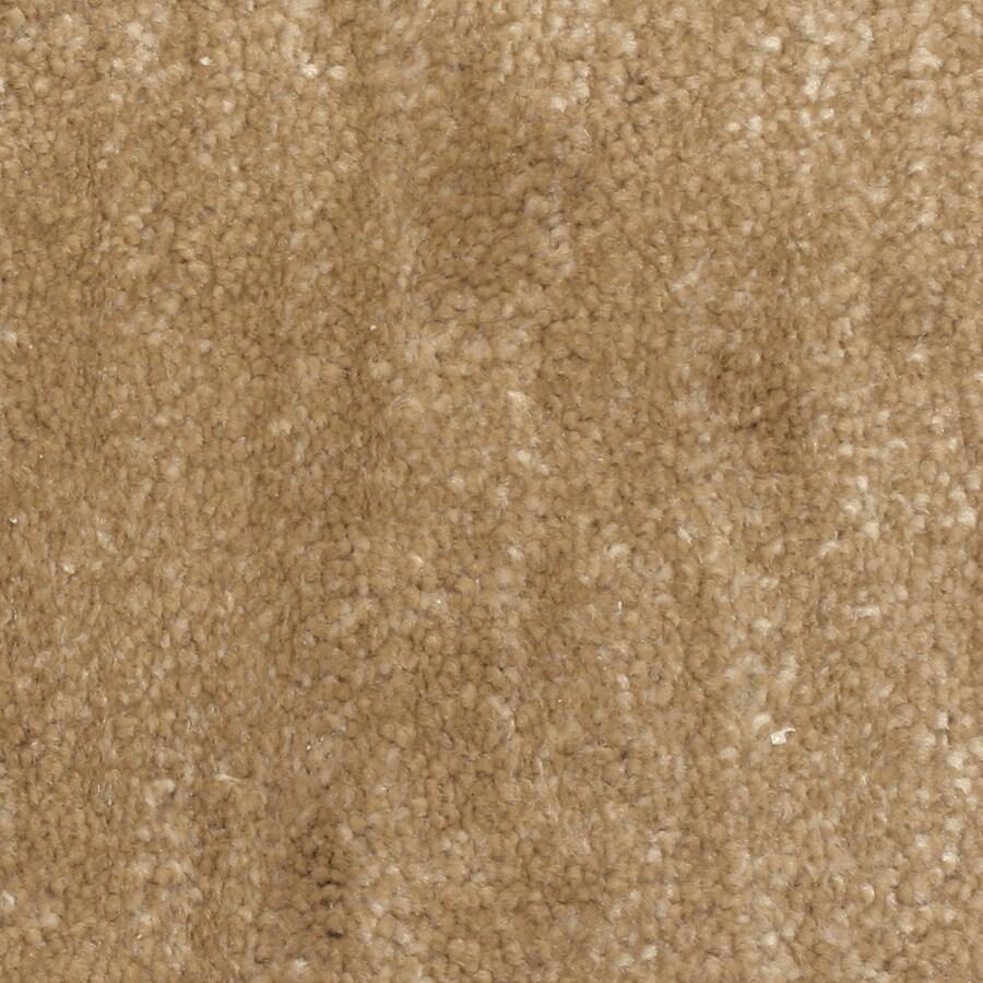 STAINMASTER PetProtect Grays Harbor Cove Carpet Sample