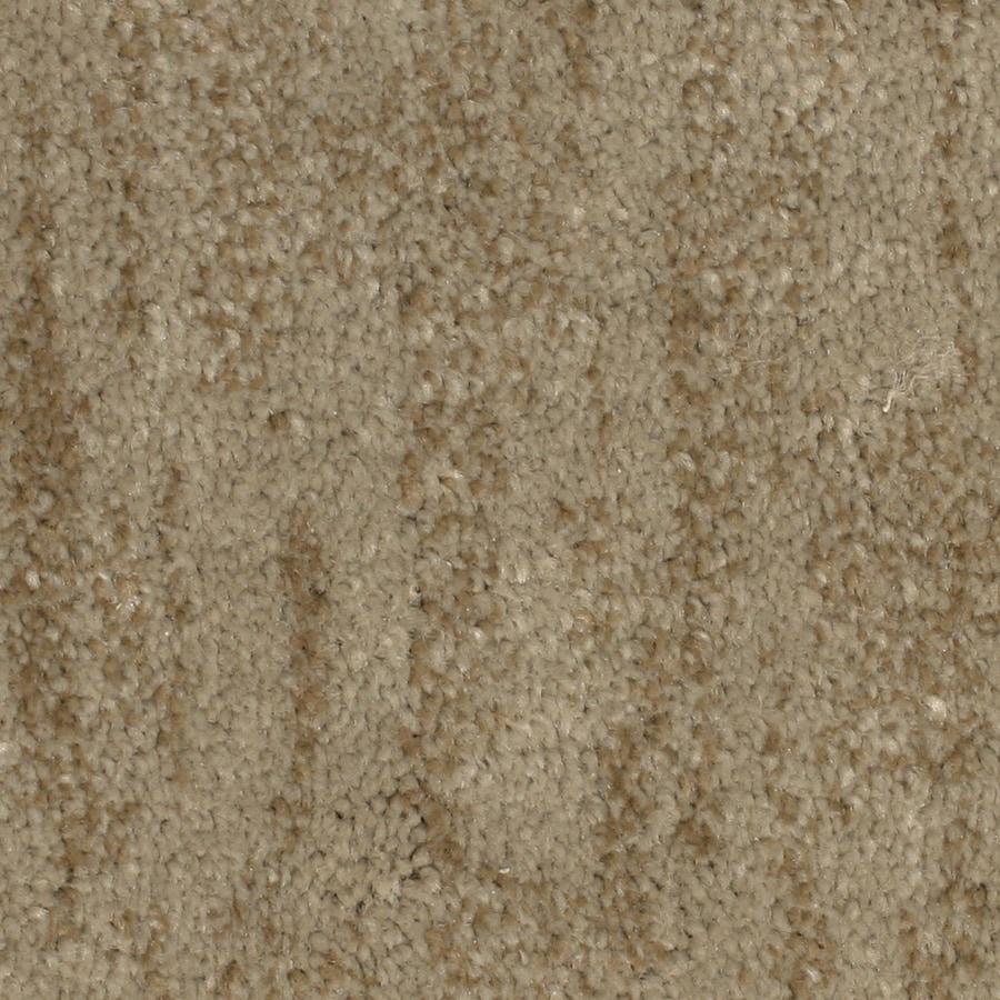 STAINMASTER PetProtect Grays Harbor Inlet Carpet Sample