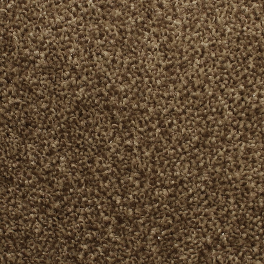 STAINMASTER PetProtect Briarcliffe Hills Brocade Carpet Sample