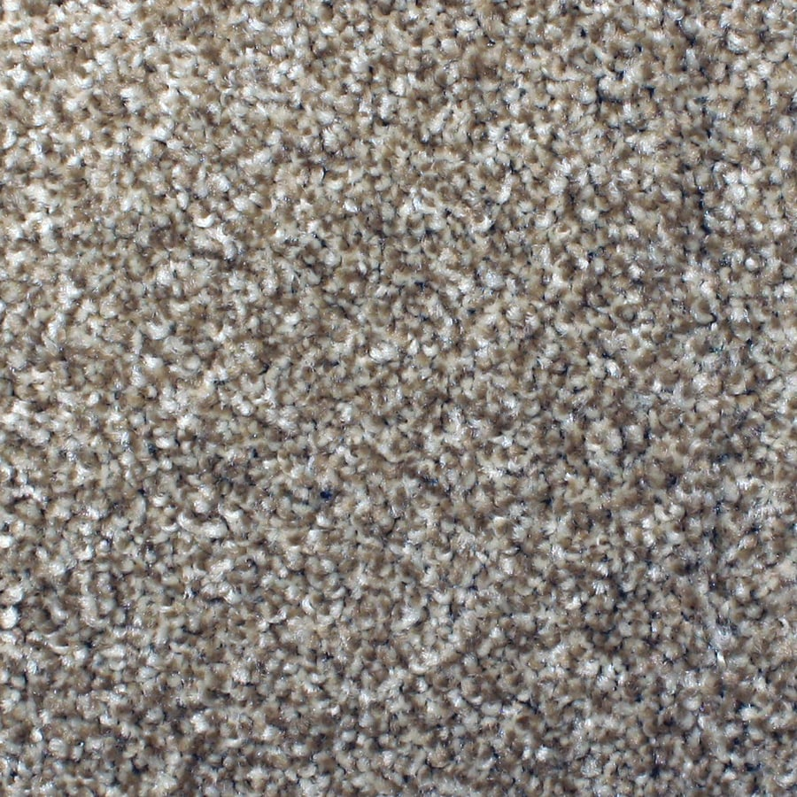 Stainmaster Petprotect Briarcliffe Hills Dazzling Carpet