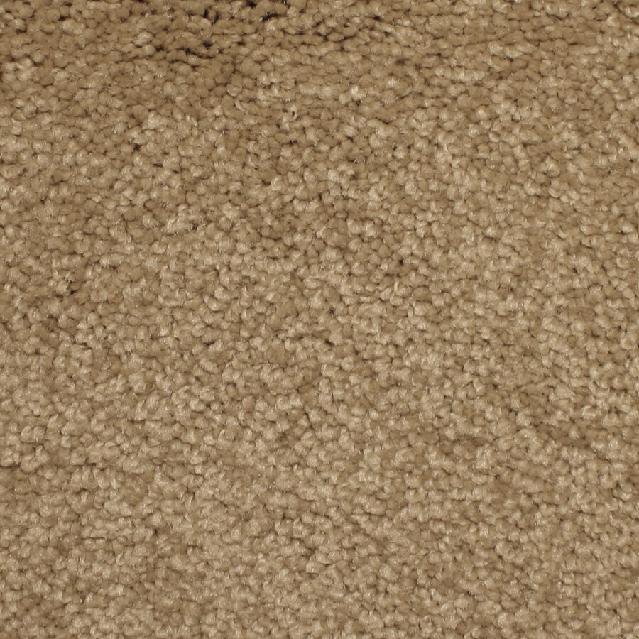 STAINMASTER PetProtect Briarcliffe Hills Duchess Carpet Sample