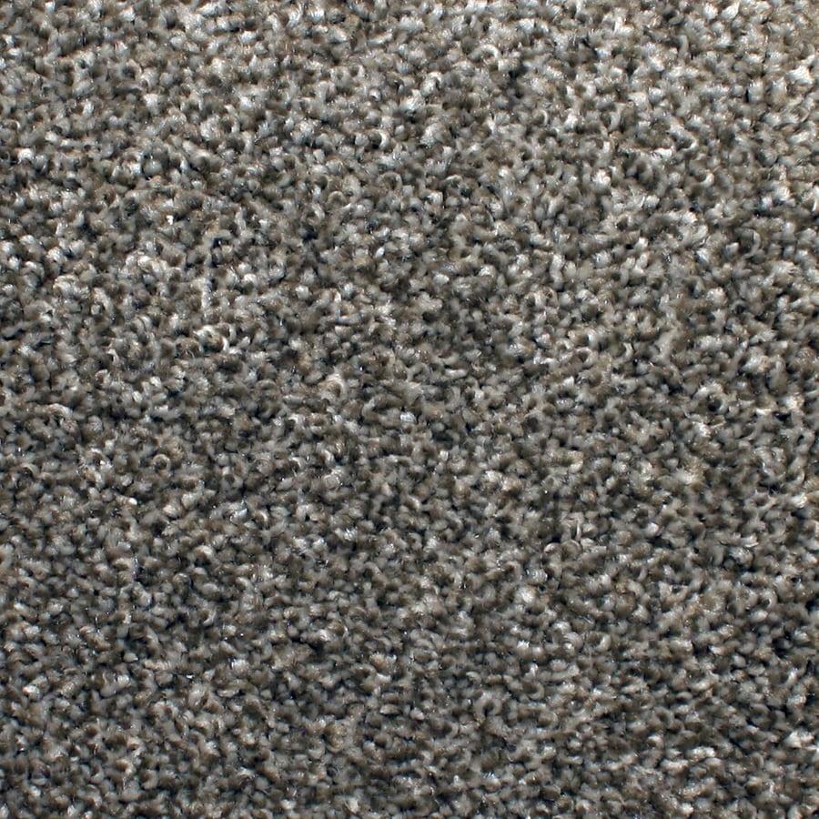 STAINMASTER PetProtect Briarcliffe Hills Filigree Carpet Sample