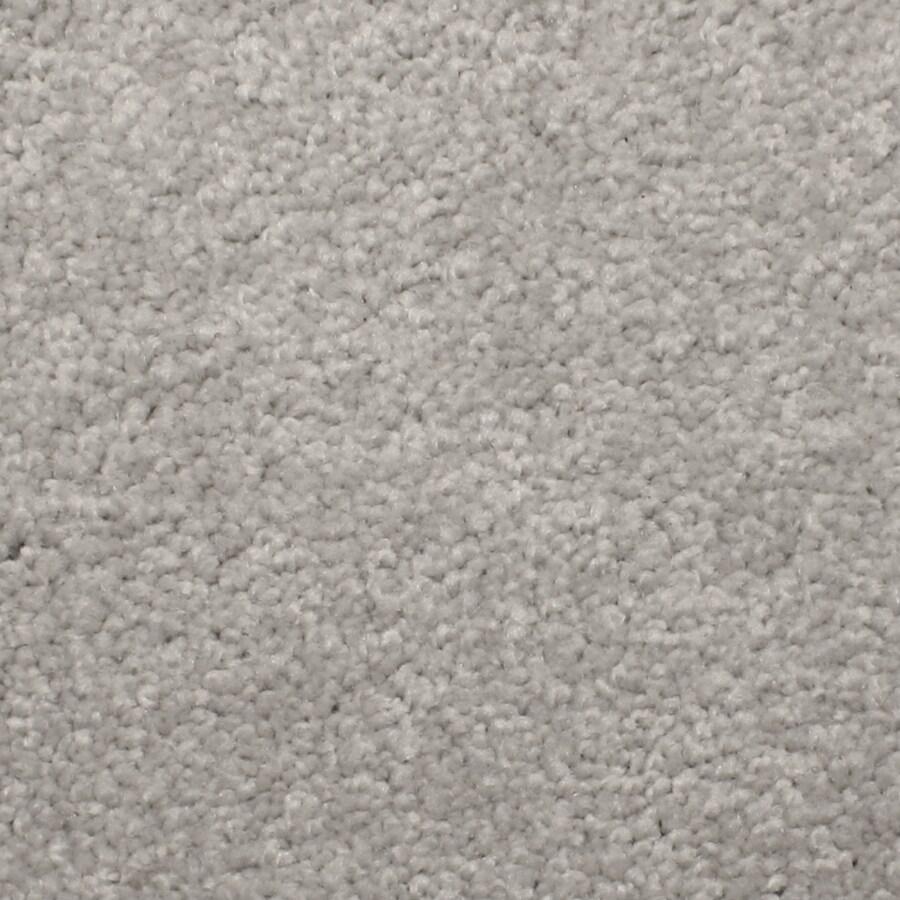 STAINMASTER PetProtect Briarcliffe Hills Vintage Carpet Sample