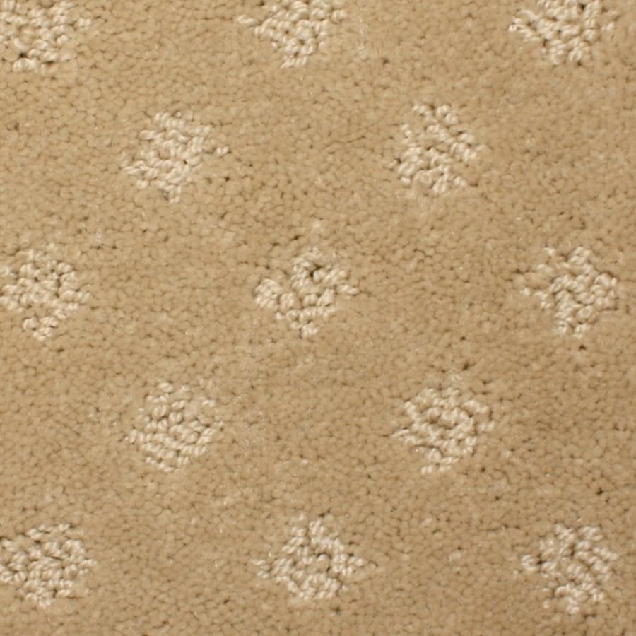 STAINMASTER PetProtect Spring Hope Boxwood Carpet Sample