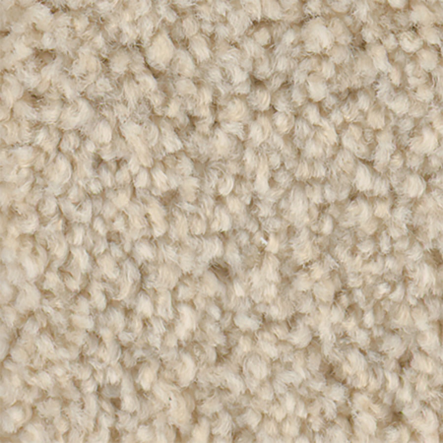 STAINMASTER Active Family Wade Pool I Sweet Cream Carpet Sample