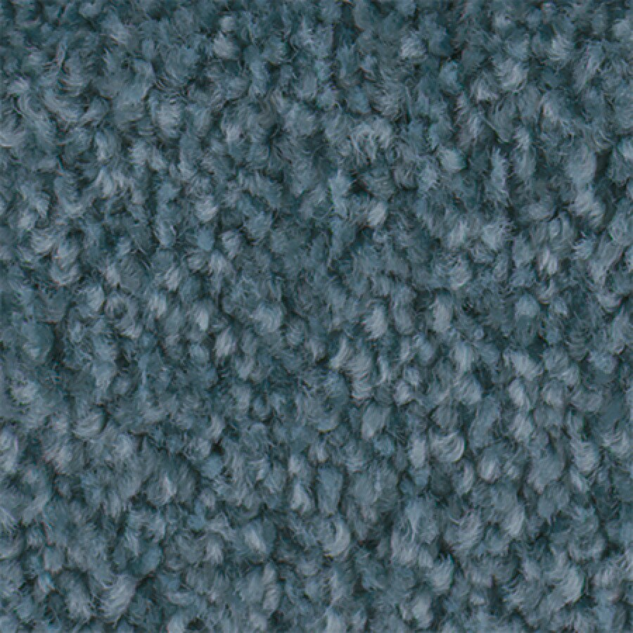 STAINMASTER Active Family Wade Pool I Aruba Carpet Sample