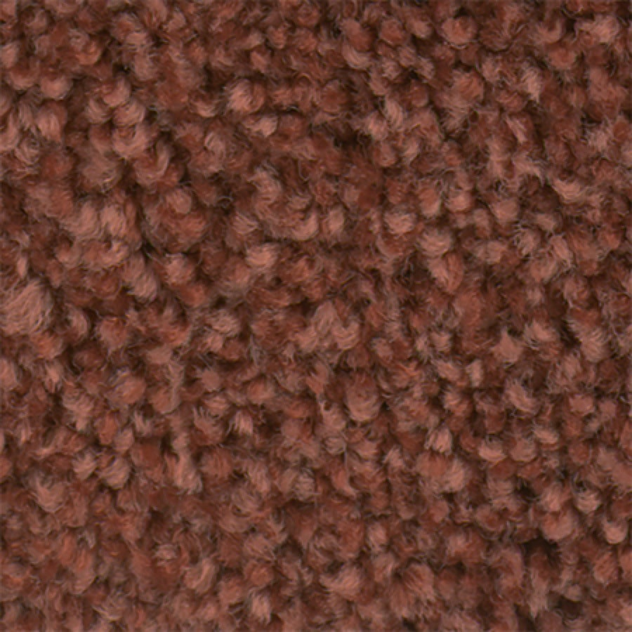 STAINMASTER Active Family Wade Pool II Curry Carpet Sample
