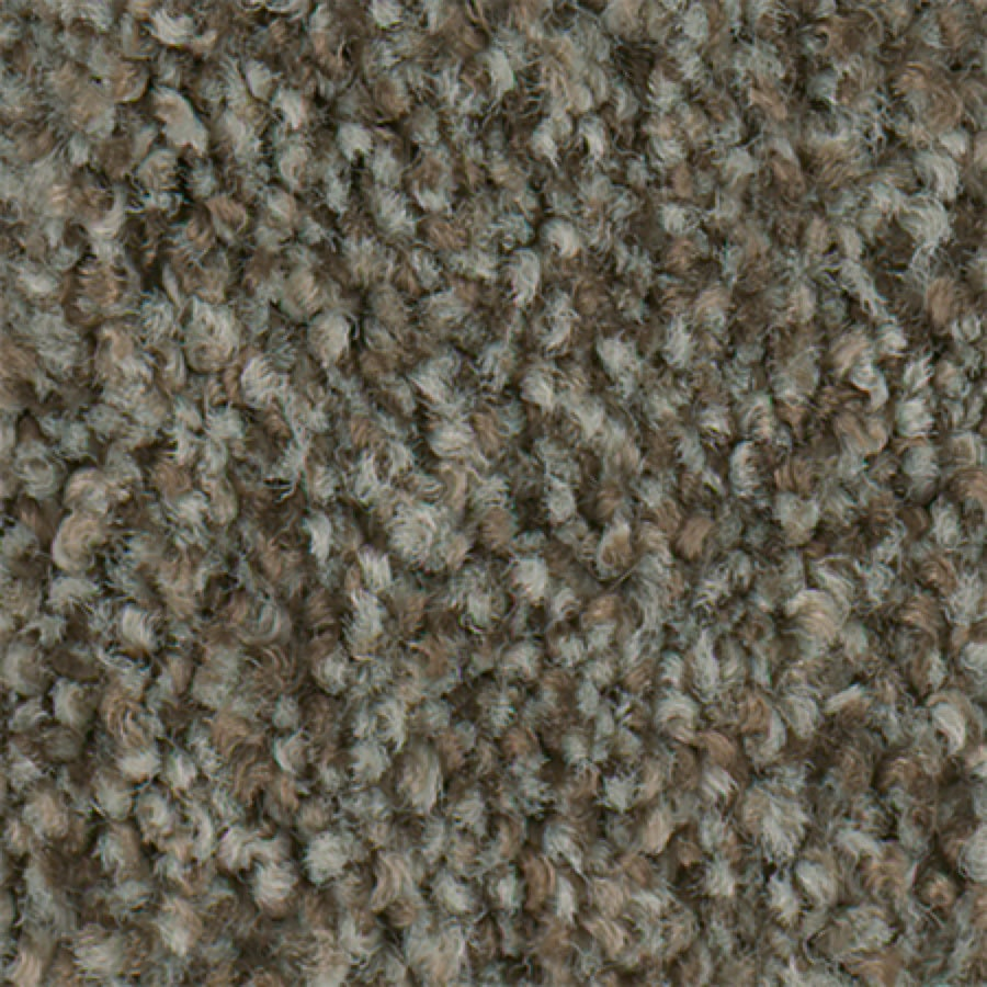 STAINMASTER Active Family Water Taxi II Buckeye Carpet Sample