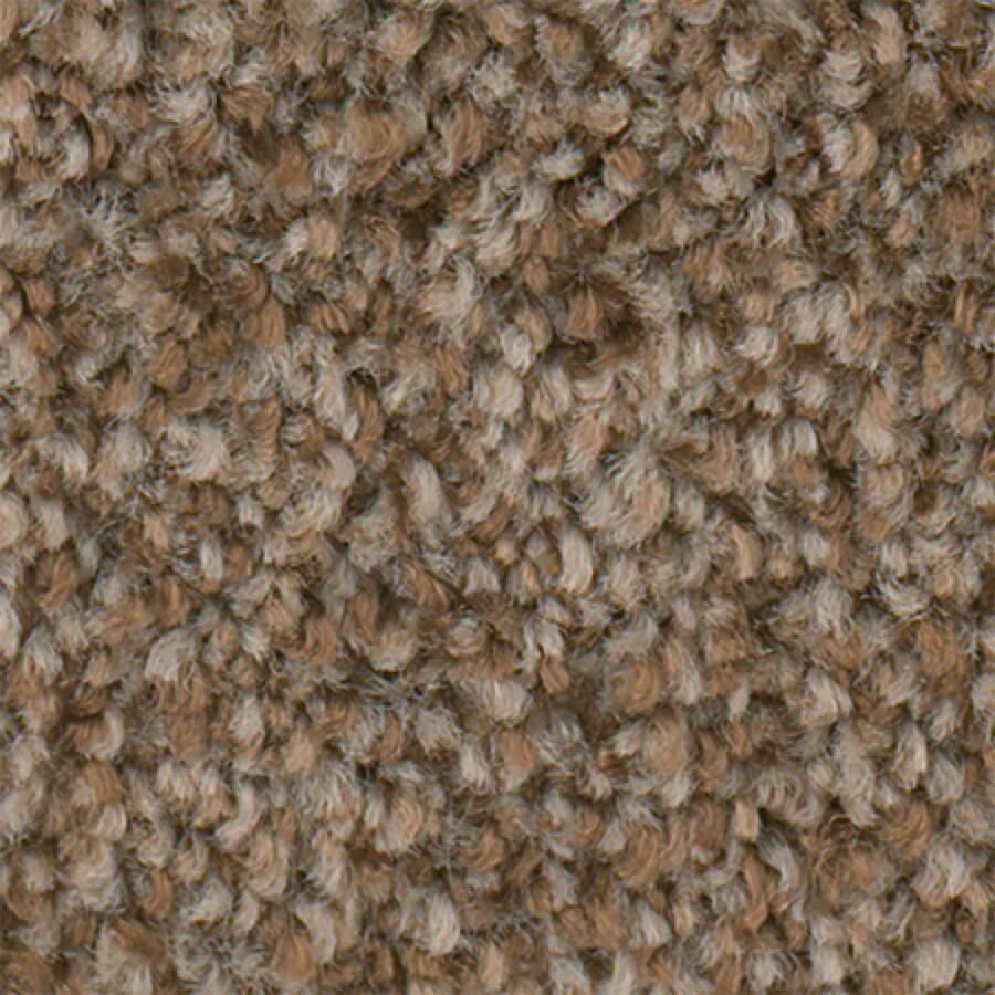 STAINMASTER Active Family Water Taxi II Tan Carpet Sample