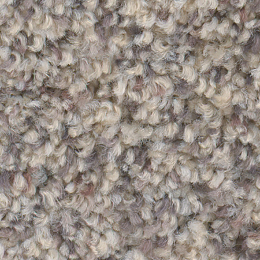 STAINMASTER Active Family Water Tower I Summer Wind Carpet Sample