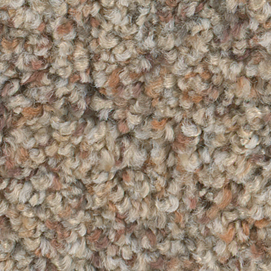 STAINMASTER Active Family Water Tower II Maple Wood Carpet Sample
