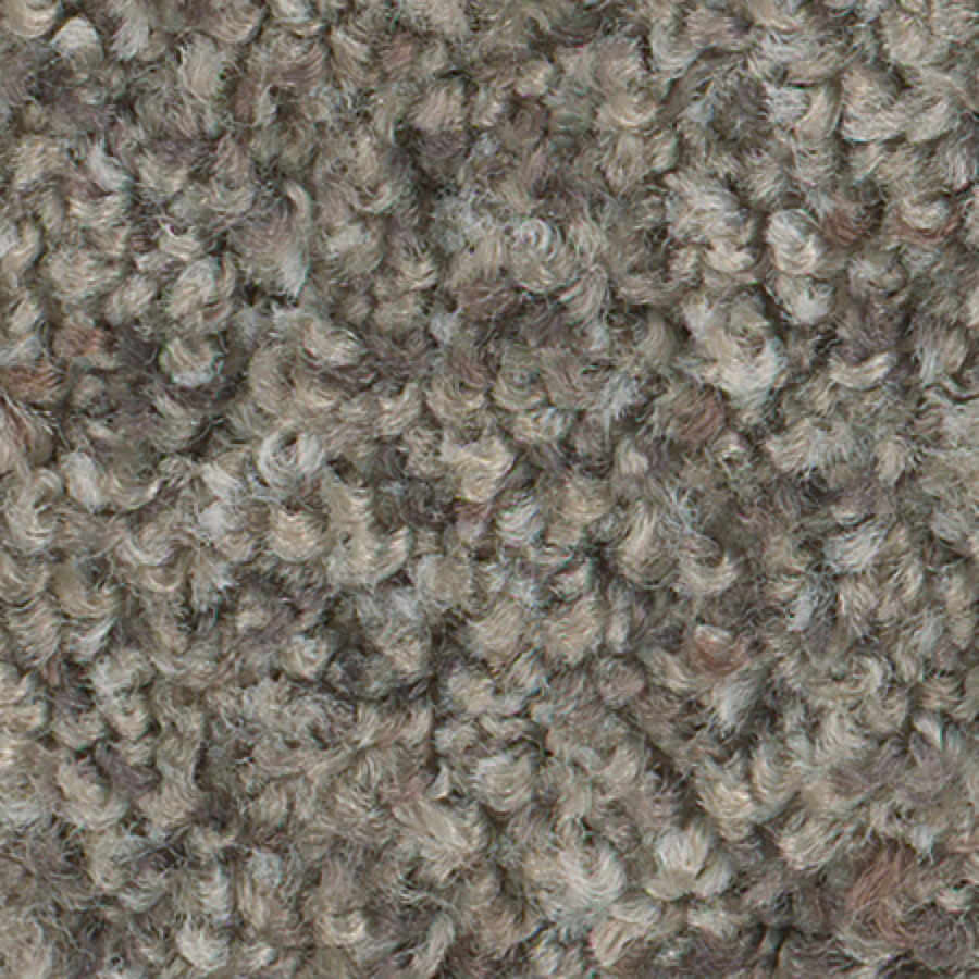 STAINMASTER Active Family Water Tower II Granite Carpet Sample