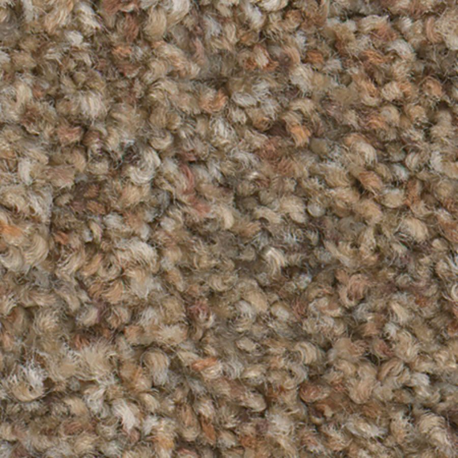 STAINMASTER Active Family Water Tower II Wheat Field Carpet Sample