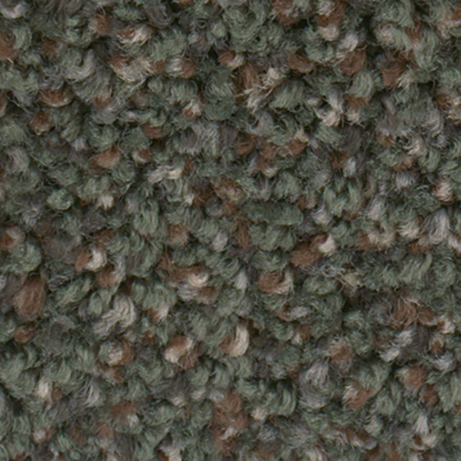STAINMASTER Active Family Splash City I Evergreen Carpet Sample