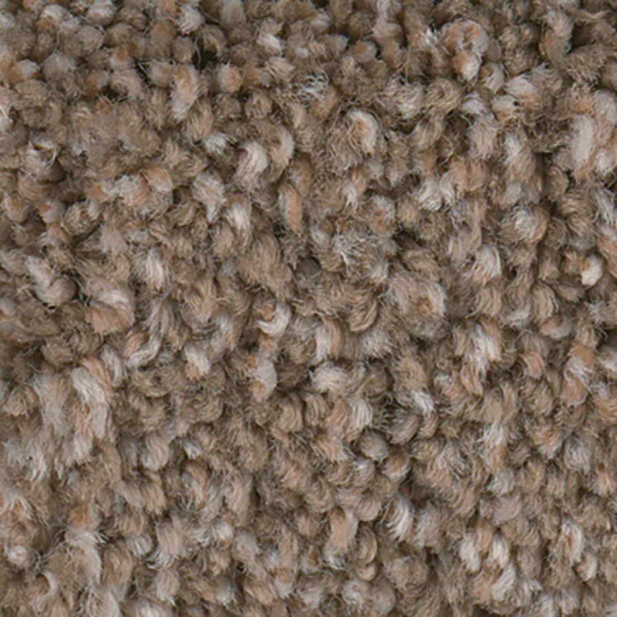 STAINMASTER Splash City II Active Family Pebble Path Plush Carpet Sample