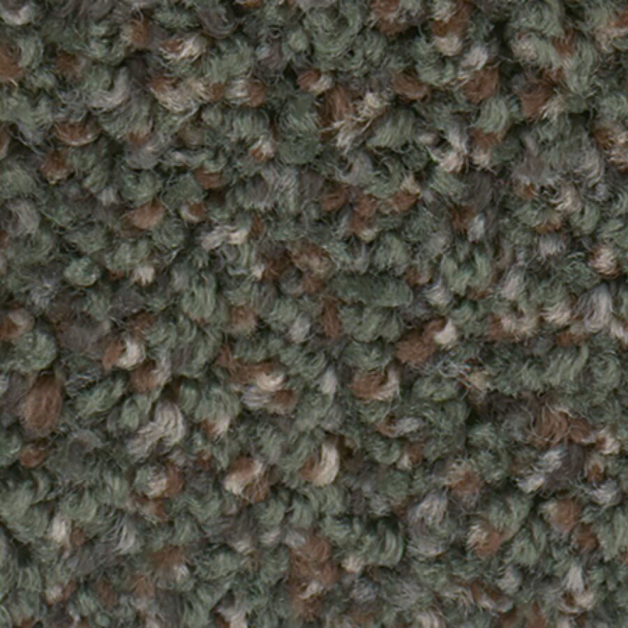STAINMASTER Active Family Splash City II Evergreen Carpet Sample