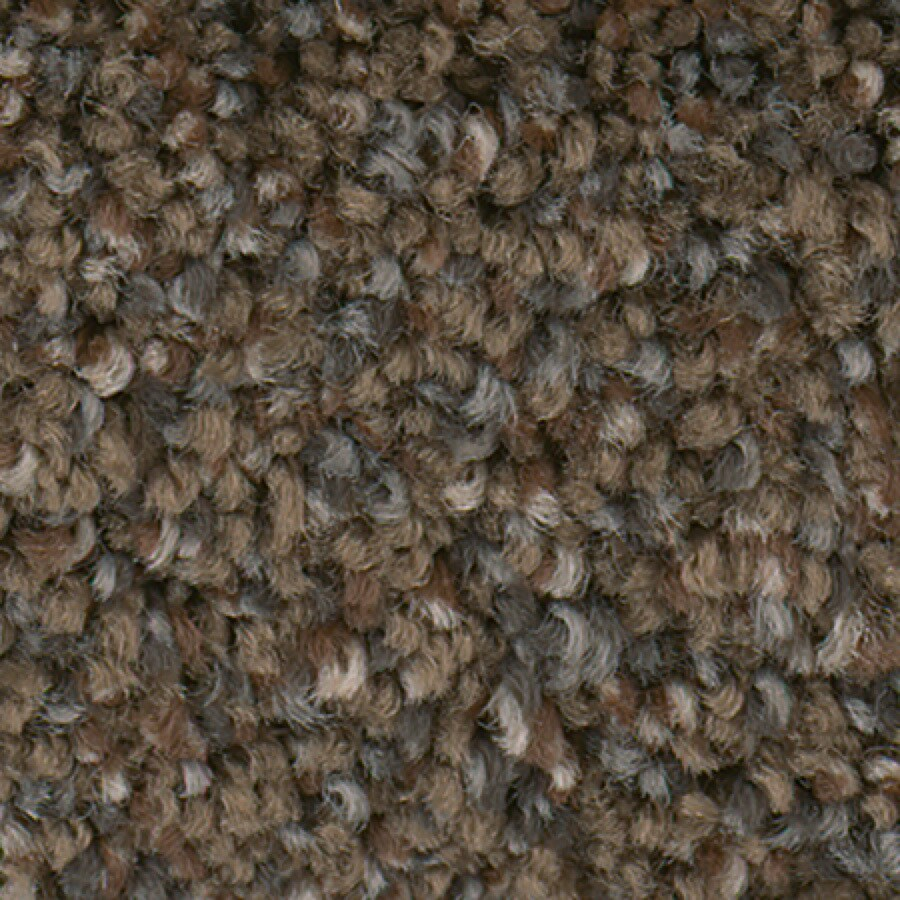 STAINMASTER Active Family Splash City II Barrel Carpet Sample