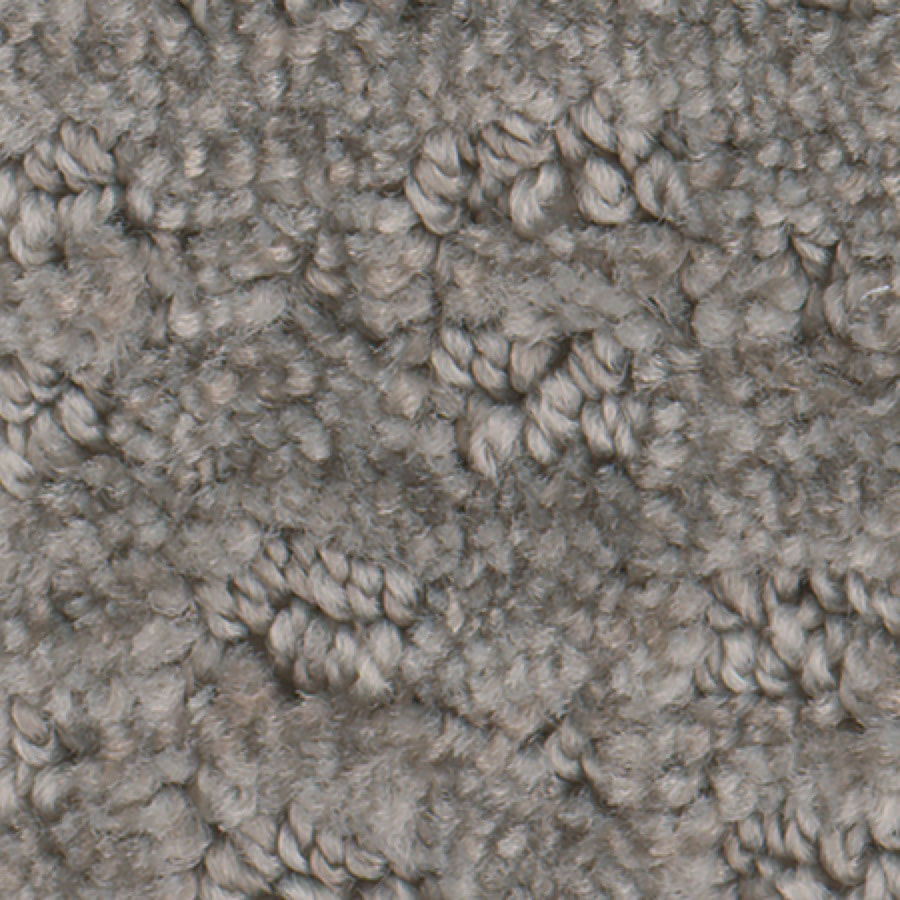 STAINMASTER Active Family Splash Town Mink Carpet Sample