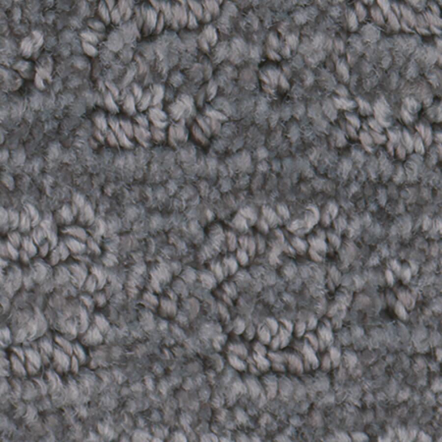 STAINMASTER Active Family Splash Town Nickel Carpet Sample
