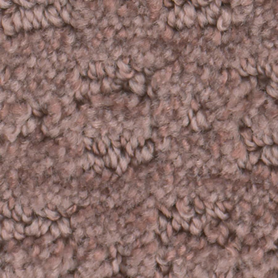 STAINMASTER Active Family Splash Town Blush Carpet Sample