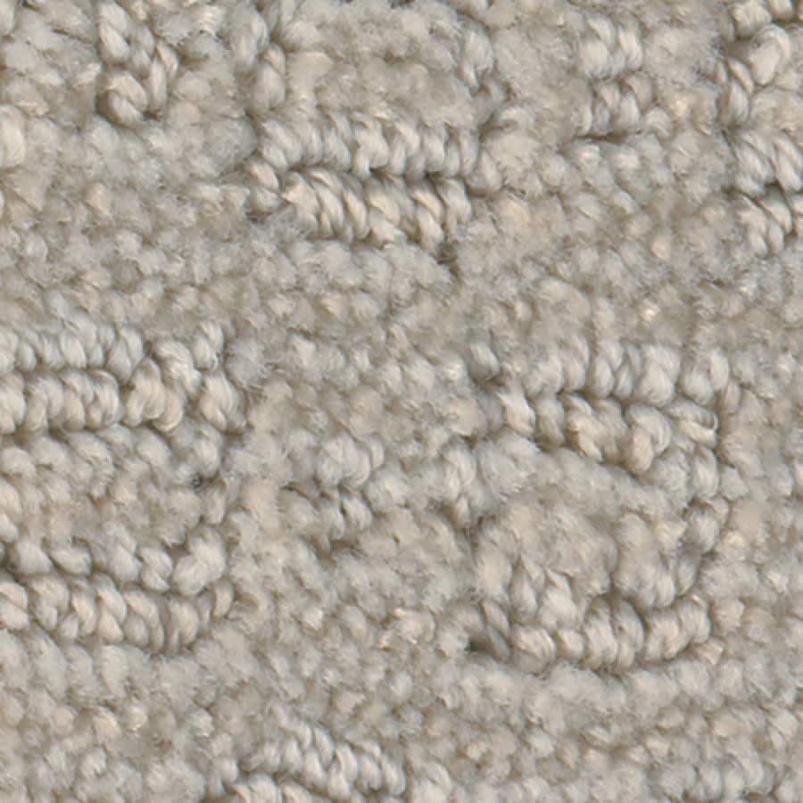 STAINMASTER Active Family Repel Pearl Carpet Sample