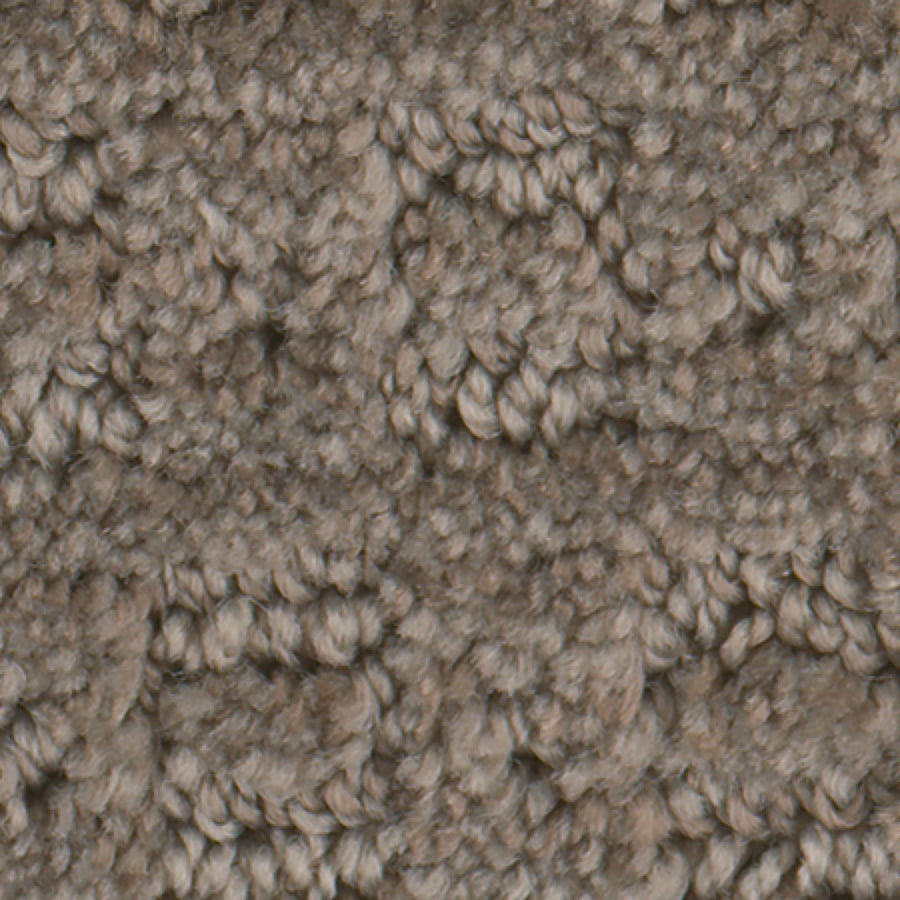 STAINMASTER Active Family Repel City Skyline Carpet Sample
