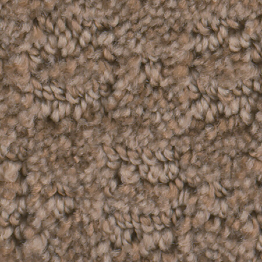 STAINMASTER Active Family Repel Pie Crust Carpet Sample