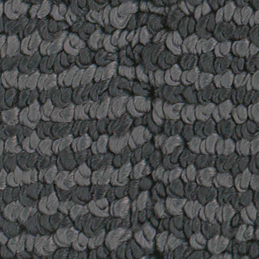 STAINMASTER Active Family Canoe Charcoal Carpet Sample